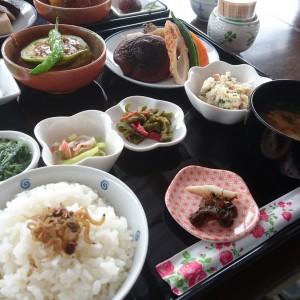 山菜やそのときの季節のものを美味しくいただきます。