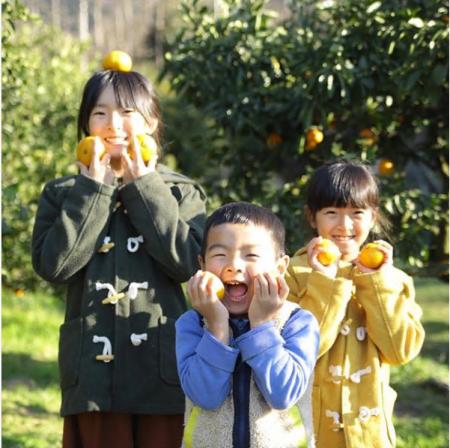 【有田市】子供