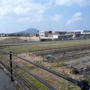 toyotamakoto (1)